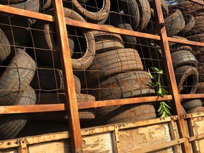 Prefeitura encaminha aproximadamente 15 toneladas de pneus inservíveis para reciclagem